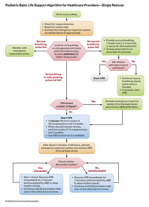 Pediatric Basic and Advanced Life Support Algorithm for Healthcare Providers - Single Rescuer